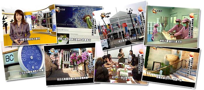 兩岸大視野 台灣 好萊塢明星 主播 名媛 愛用 藍帶級 保養品 COAST NATURE